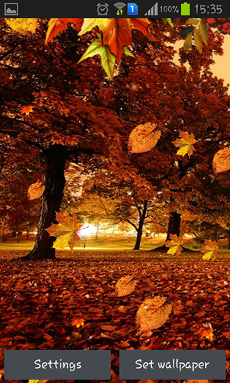 Screenshots of the Autumn streets for Android tablet, phone.