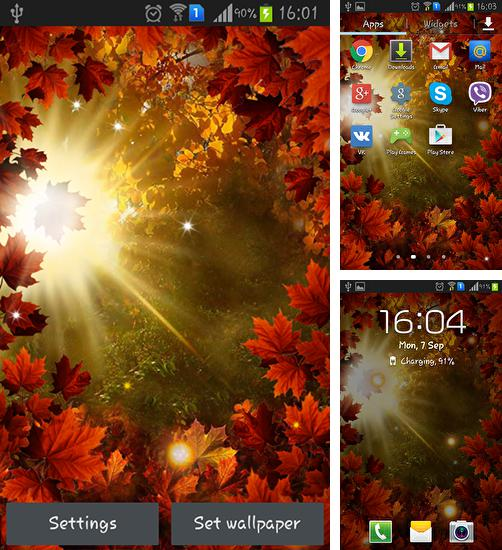 In addition to live wallpaper Nature for Android phones and tablets, you can also download Autumn sun for free.