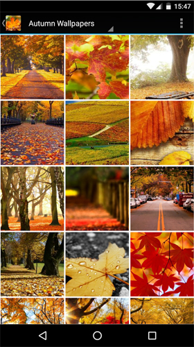 Kostenloses Android-Live Wallpaper Herbst. Vollversion der Android-apk-App Autumn wallpapers by Infinity für Tablets und Telefone.