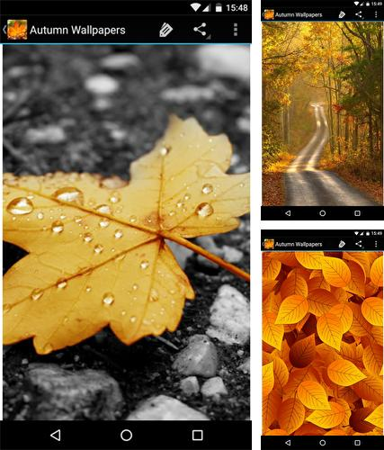 Autumn wallpapers by Infinity