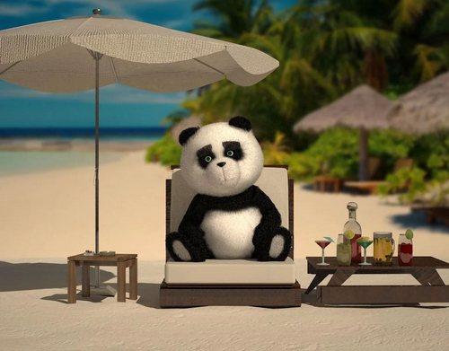 Descargar Bear Para Android Gratis El Fondo De Pantalla Animados