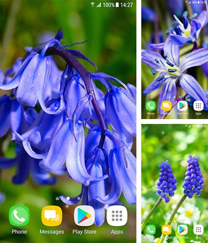 Download live wallpaper Beautiful spring flowers for Android. Get full version of Android apk livewallpaper