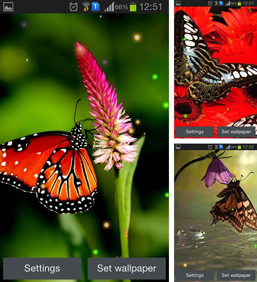 Download live wallpaper Best butterfly for Android. Get full version of Android apk livewallpaper Best butterfly for tablet and phone.