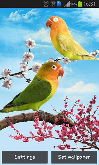 Download Birds - livewallpaper for Android. Birds apk - free download.