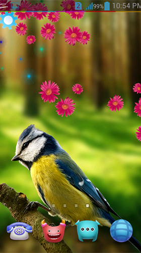 Screenshots of the Birds 3D by AppQueen Inc. for Android tablet, phone.