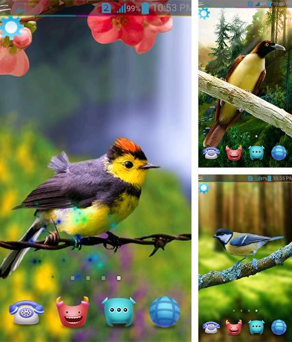 Baixe o papeis de parede animados Birds 3D by AppQueen Inc. para Android gratuitamente. Obtenha a versao completa do aplicativo apk para Android Birds 3D by AppQueen Inc. para tablet e celular.