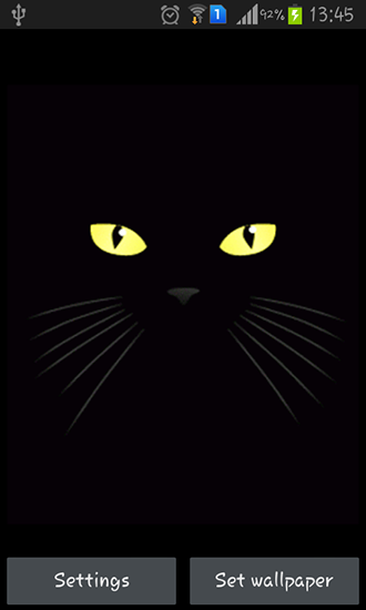 Download Black cat - livewallpaper for Android. Black cat apk - free download.