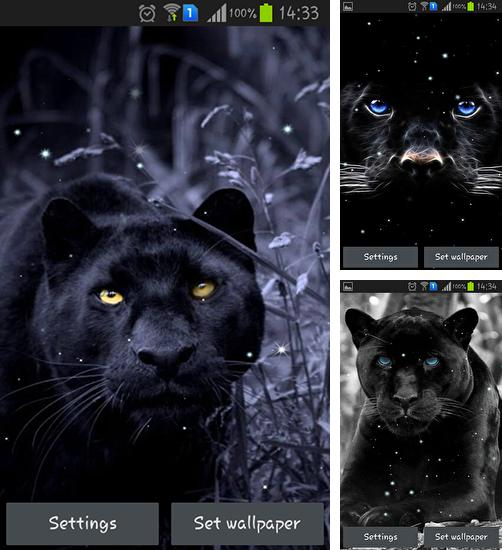 In addition to live wallpaper Spring is coming for Android phones and tablets, you can also download Black panther for free.