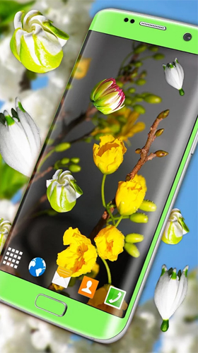 Screenshots von Blossoms 3D für Android-Tablet, Smartphone.