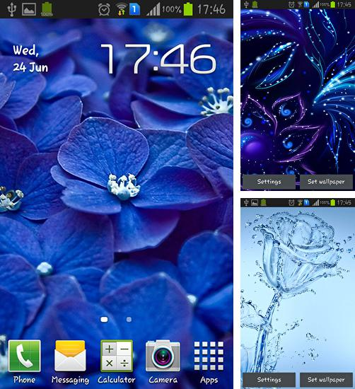 In addition to live wallpaper Steampunk clock for Android phones and tablets, you can also download Blue flowers for free.