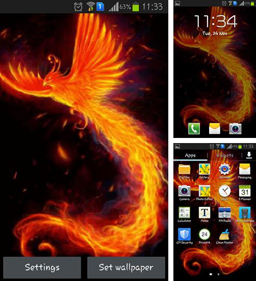 In addition to live wallpaper Mystic night by Amax LWPS for Android phones and tablets, you can also download Bright bird for free.