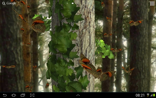 Screenshots von Butterfly 3D für Android-Tablet, Smartphone.