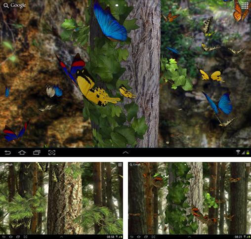 In addition to live wallpaper Forest birds for Android phones and tablets, you can also download Butterfly 3D for free.