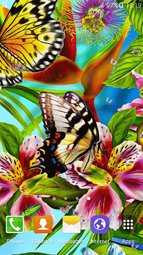 Геймплей Butterfly by Free Wallpapers and Backgrounds для Android телефона.