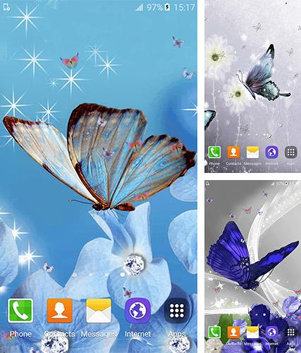 Download live wallpaper Butterfly by Free Wallpapers and Backgrounds for Android. Get full version of Android apk livewallpaper Butterfly by Free Wallpapers and Backgrounds for tablet and phone.