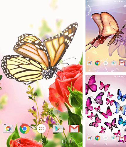 Butterfly By Fun Live Wallpapers Live Wallpaper For Android