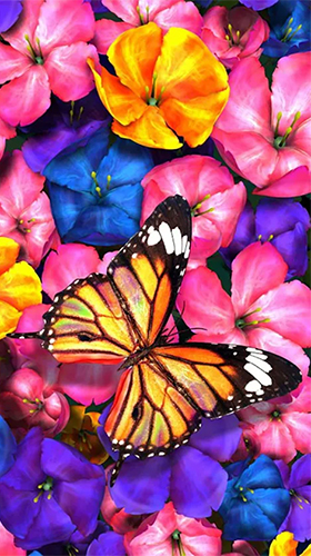 Butterfly by HQ Awesome Live Wallpaper