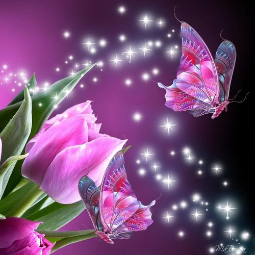 Butterfly Magic 3d Live Wallpaper For Android Butterfly Magic 3d