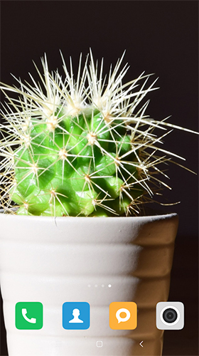 Screenshots of the Cactus for Android tablet, phone.