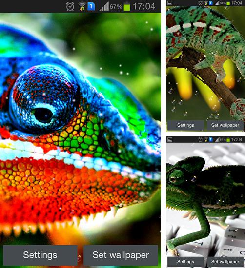 In addition to live wallpaper Bit day for Android phones and tablets, you can also download Chameleon for free.