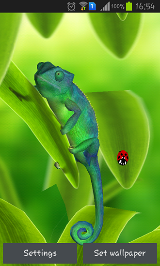 Download livewallpaper Chameleon 3D for Android. Get full version of Android apk livewallpaper Chameleon 3D for tablet and phone.