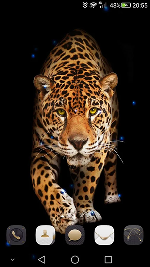 Download livewallpaper Cheetah for Android. Get full version of Android apk livewallpaper Cheetah for tablet and phone.