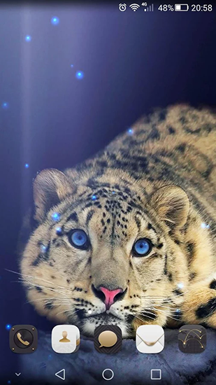 Screenshots of the Cheetah for Android tablet, phone.