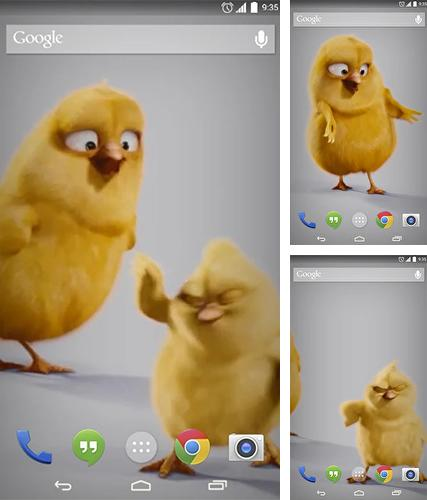 Download live wallpaper Chickens for Android. Get full version of Android apk livewallpaper Chickens for tablet and phone.