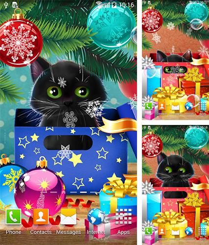 Download live wallpaper Christmas cat for Android. Get full version of Android apk livewallpaper Christmas cat for tablet and phone.