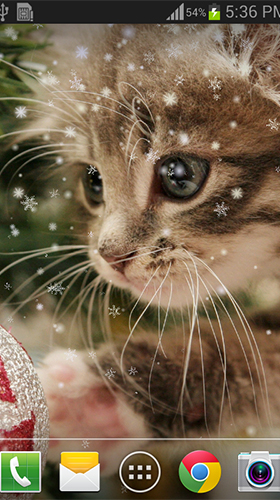 Screenshots von Christmas cat by live wallpaper HongKong für Android-Tablet, Smartphone.