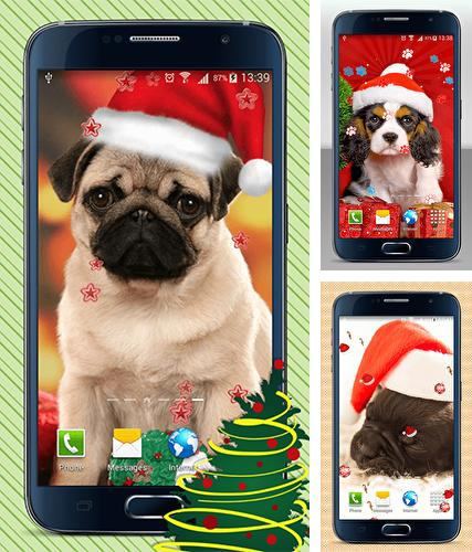 Download live wallpaper Christmas dogs for Android. Get full version of Android apk livewallpaper Christmas dogs for tablet and phone.