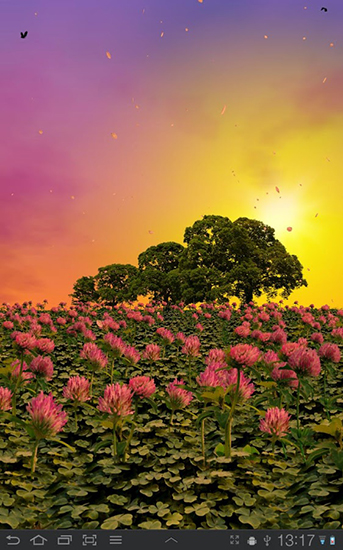 Download Clover field - livewallpaper for Android. Clover field apk - free download.