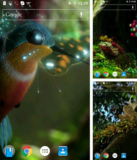 In addition to live wallpaper Plasticine aquarium for Android phones and tablets, you can also download Colibri by Joseires for free.