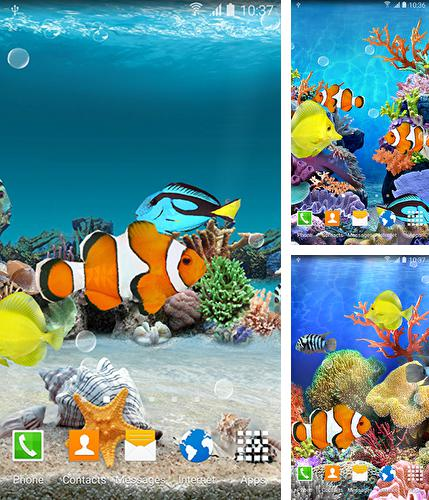 Download live wallpaper Coral fish for Android. Get full version of Android apk livewallpaper Coral fish for tablet and phone.