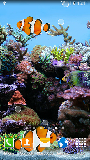 Download livewallpaper Coral fish 3D for Android. Get full version of Android apk livewallpaper Coral fish 3D for tablet and phone.