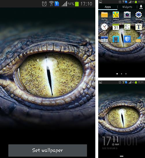 In addition to Crocodile eyes live wallpapers for Android, you can download other free Android live wallpapers for Samsung Galaxy On5 Pro.