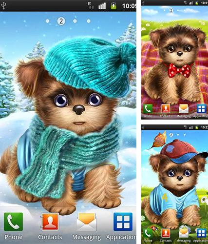 Download live wallpaper Cute and sweet puppy: Dress him up for Android. Get full version of Android apk livewallpaper Cute and sweet puppy: Dress him up for tablet and phone.