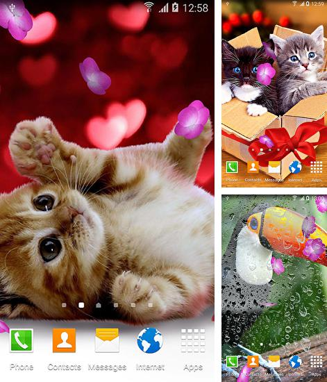 In addition to live wallpaper Queen peacock for Android phones and tablets, you can also download Cute animals by Live wallpapers 3D for free.
