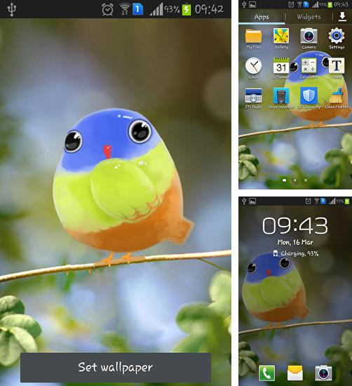 In addition to live wallpaper Funny Christmas kitten and his smile for Android phones and tablets, you can also download Cute bird for free.