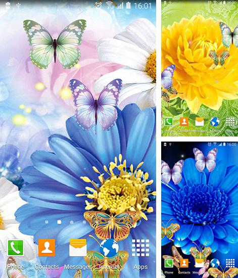 In addition to live wallpaper Octopus for Android phones and tablets, you can also download Cute butterfly for free.