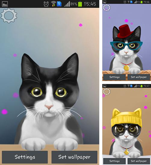 In addition to live wallpaper Cat HD for Android phones and tablets, you can also download Cute kitty for free.