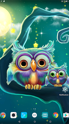 Screenshots of the Cute owls for Android tablet, phone.