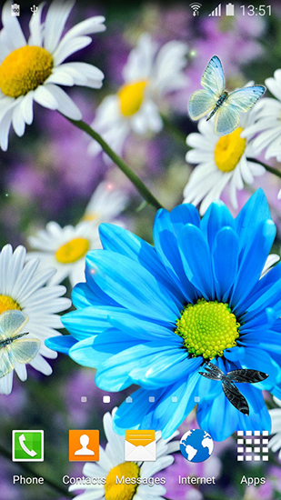 Daisies by Live wallpapers 3D live wallpaper for Android