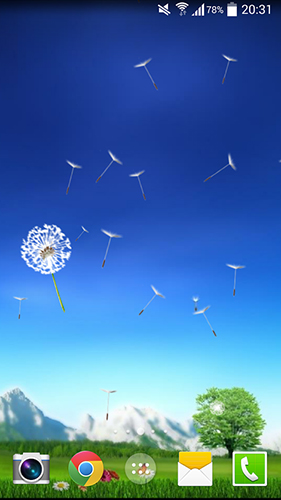 Download Dandelion by Crown Apps - livewallpaper for Android. Dandelion by Crown Apps apk - free download.