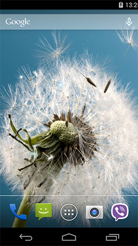 Download Dandelion by Wallpapers Pro - livewallpaper for Android. Dandelion by Wallpapers Pro apk - free download.
