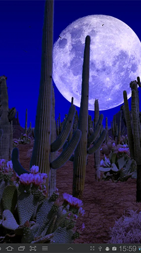 Screenshots of the Desert for Android tablet, phone.