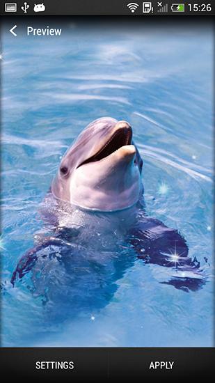 Dolphin Pour Android A Telecharger Gratuitement Fond D Ecran Anime Dauphin Sous Android