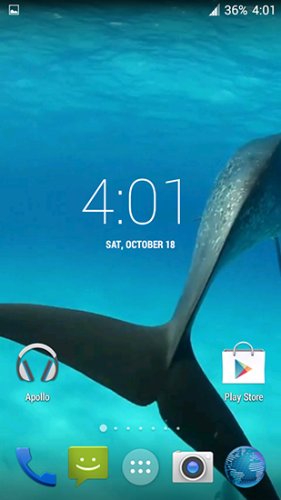 Screenshots of the Dolphins HD for Android tablet, phone.