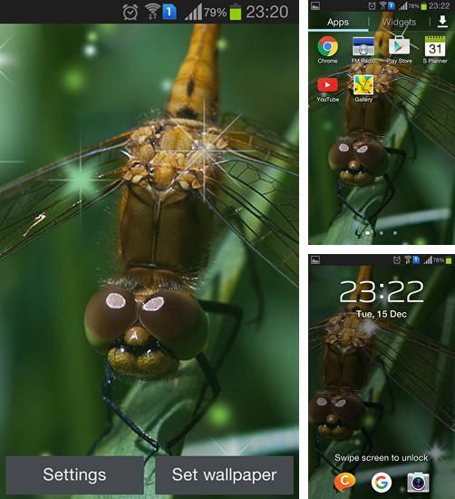 In addition to live wallpaper Space Mars: Star for Android phones and tablets, you can also download Dragonfly for free.