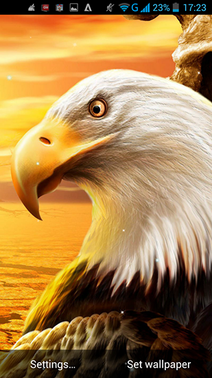 Download livewallpaper Eagle for Android. Get full version of Android apk livewallpaper Eagle for tablet and phone.